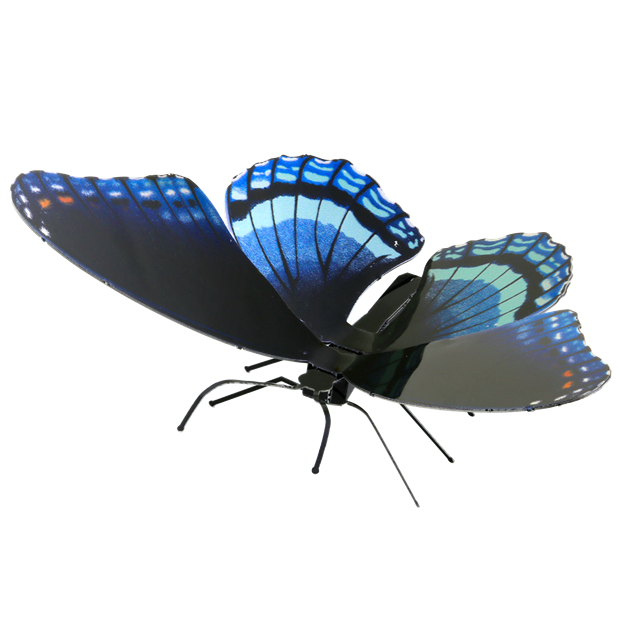 Picture of Red Spotted Purple
